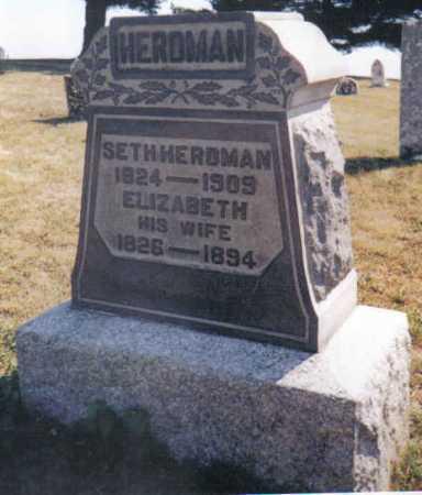 HERDMAN HERDMAN, ELIZABETH - Adams County, Ohio | ELIZABETH HERDMAN HERDMAN - Ohio Gravestone Photos