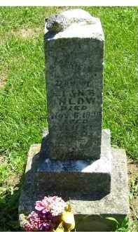 INLOW, FANNIE - Adams County, Ohio | FANNIE INLOW - Ohio Gravestone Photos