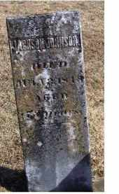 JOHNSON, JACKSON - Adams County, Ohio   JACKSON JOHNSON - Ohio Gravestone Photos