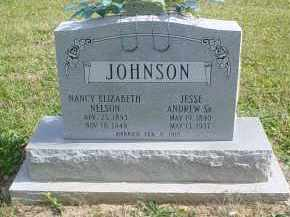 NELSON JOHNSON, NANCY ELIZABETH - Adams County, Ohio | NANCY ELIZABETH NELSON JOHNSON - Ohio Gravestone Photos