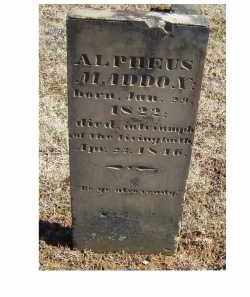 MADDOX, ALPHEUS - Adams County, Ohio | ALPHEUS MADDOX - Ohio Gravestone Photos