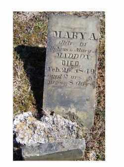 MADDOX, MARY A. - Adams County, Ohio | MARY A. MADDOX - Ohio Gravestone Photos