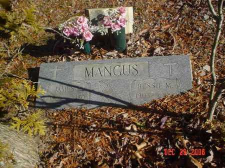 MANGUS, JAMES M. - Adams County, Ohio | JAMES M. MANGUS - Ohio Gravestone Photos