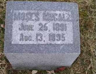 MCCALL, MOSES - Adams County, Ohio | MOSES MCCALL - Ohio Gravestone Photos