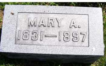 MCCANN, MARY A. - Adams County, Ohio | MARY A. MCCANN - Ohio Gravestone Photos