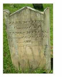 MCCLUNG, JANE - Adams County, Ohio   JANE MCCLUNG - Ohio Gravestone Photos