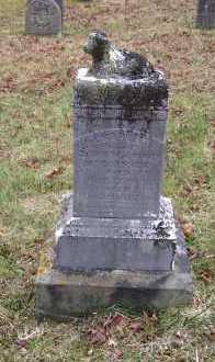 MCCORMICK, CHARLIE - Adams County, Ohio | CHARLIE MCCORMICK - Ohio Gravestone Photos