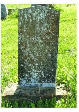 MCCREIGHT, JOSEPH - Adams County, Ohio | JOSEPH MCCREIGHT - Ohio Gravestone Photos