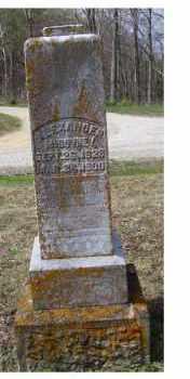MCGOVNEY, ALEXANDER - Adams County, Ohio | ALEXANDER MCGOVNEY - Ohio Gravestone Photos