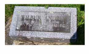 MCINTIRE, WILBUR ANDREW - Adams County, Ohio | WILBUR ANDREW MCINTIRE - Ohio Gravestone Photos