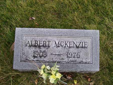 MCKENZIE, ALBERT - Adams County, Ohio | ALBERT MCKENZIE - Ohio Gravestone Photos