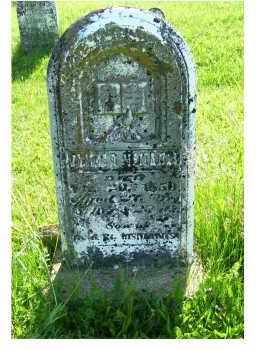MCMANIS, JAMES D. - Adams County, Ohio | JAMES D. MCMANIS - Ohio Gravestone Photos