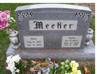 CROTHERS MEEKER, SYLVIA - Adams County, Ohio | SYLVIA CROTHERS MEEKER - Ohio Gravestone Photos