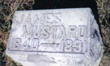 MUSTARD, JAMES - Adams County, Ohio | JAMES MUSTARD - Ohio Gravestone Photos