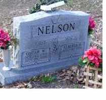 NELSON, OSCAR W - Adams County, Ohio | OSCAR W NELSON - Ohio Gravestone Photos