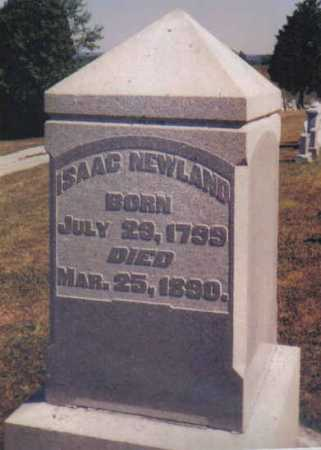 NEWLAND, ISAAC - Adams County, Ohio | ISAAC NEWLAND - Ohio Gravestone Photos
