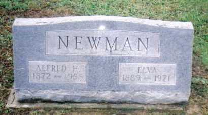NEWMAN, ALFRED H. - Adams County, Ohio | ALFRED H. NEWMAN - Ohio Gravestone Photos