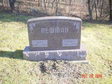 NEWMAN, ALICE - Adams County, Ohio | ALICE NEWMAN - Ohio Gravestone Photos