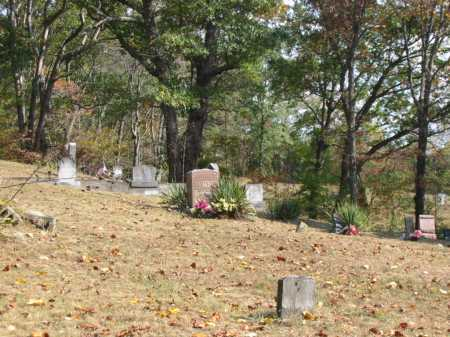 NEWMAN CEMETERY, WEST SECTION- EASTWARD VIEW - Adams County, Ohio | WEST SECTION- EASTWARD VIEW NEWMAN CEMETERY - Ohio Gravestone Photos