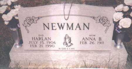 NEWMAN, HARLAN - Adams County, Ohio | HARLAN NEWMAN - Ohio Gravestone Photos