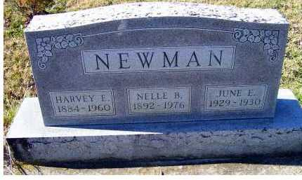 NEWMAN, JUNE E. - Adams County, Ohio | JUNE E. NEWMAN - Ohio Gravestone Photos