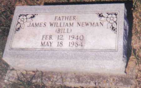 NEWMAN, JAMES WILLIAM - Adams County, Ohio | JAMES WILLIAM NEWMAN - Ohio Gravestone Photos