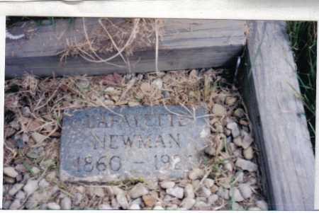 NEWMAN, LAFAYETTE - Adams County, Ohio | LAFAYETTE NEWMAN - Ohio Gravestone Photos
