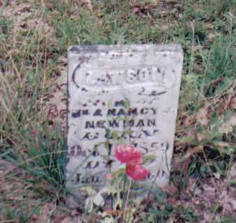 NEWMAN, LAWSON - Adams County, Ohio   LAWSON NEWMAN - Ohio Gravestone Photos