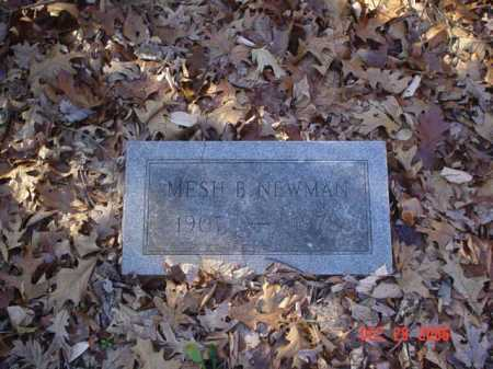NEWMAN, MESH B. - Adams County, Ohio | MESH B. NEWMAN - Ohio Gravestone Photos