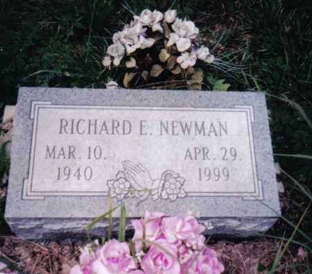 NEWMAN, RICHARD E. - Adams County, Ohio | RICHARD E. NEWMAN - Ohio Gravestone Photos