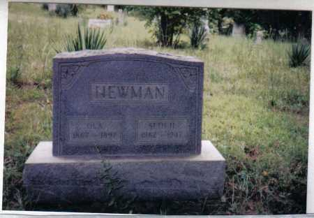 NEWMAN, OLA - Adams County, Ohio | OLA NEWMAN - Ohio Gravestone Photos