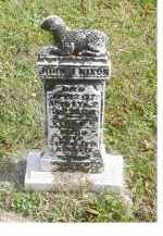 NIXON, JOHN J. - Adams County, Ohio | JOHN J. NIXON - Ohio Gravestone Photos