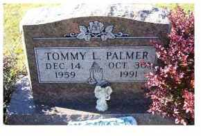 PALMER, TOMMY L. - Adams County, Ohio   TOMMY L. PALMER - Ohio Gravestone Photos