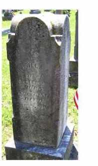 PETERSON, DRUSILLA A. - Adams County, Ohio | DRUSILLA A. PETERSON - Ohio Gravestone Photos