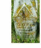 PLUMMER, ELIZA D. - Adams County, Ohio | ELIZA D. PLUMMER - Ohio Gravestone Photos