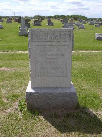PLUMMER, LEVI M - Adams County, Ohio | LEVI M PLUMMER - Ohio Gravestone Photos