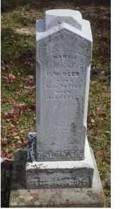 REED, MARY J. - Adams County, Ohio   MARY J. REED - Ohio Gravestone Photos