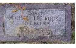 ROUSH, MICHAEL LEE - Adams County, Ohio | MICHAEL LEE ROUSH - Ohio Gravestone Photos
