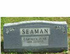SEAMAN, CAROLYN JUNE - Adams County, Ohio | CAROLYN JUNE SEAMAN - Ohio Gravestone Photos