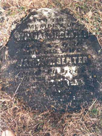 SENTER, NANCY JANE - Adams County, Ohio | NANCY JANE SENTER - Ohio Gravestone Photos