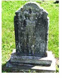 SHELBY, ESTHER - Adams County, Ohio | ESTHER SHELBY - Ohio Gravestone Photos