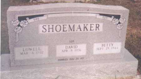 SHOEMAKER, DAVID - Adams County, Ohio | DAVID SHOEMAKER - Ohio Gravestone Photos