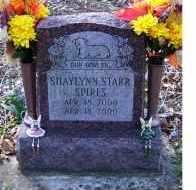 SPIRES, SHAYLYNN STARR - Adams County, Ohio | SHAYLYNN STARR SPIRES - Ohio Gravestone Photos