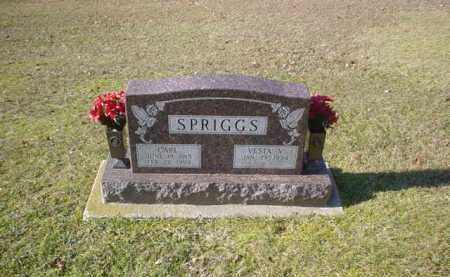 SPRIGGS, VESTA V. - Adams County, Ohio | VESTA V. SPRIGGS - Ohio Gravestone Photos