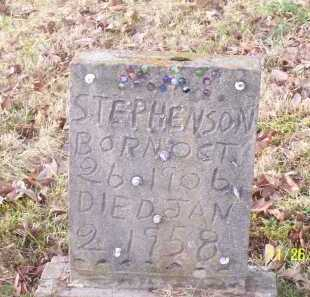 STEPHENSON, LYDA MAY - Adams County, Ohio | LYDA MAY STEPHENSON - Ohio Gravestone Photos