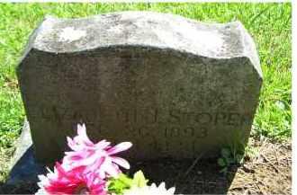 STORER, ELIZABETH J. - Adams County, Ohio | ELIZABETH J. STORER - Ohio Gravestone Photos