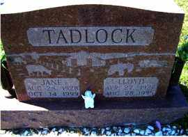TADLOCK, JANE - Adams County, Ohio | JANE TADLOCK - Ohio Gravestone Photos
