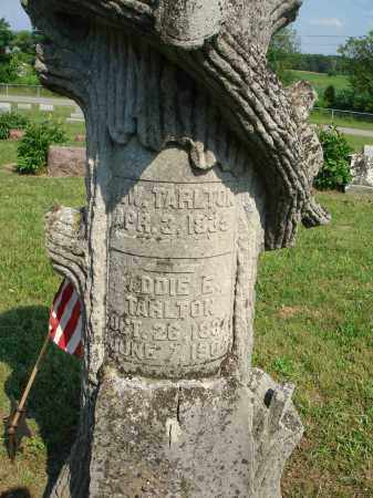 TARLTON, ADDIE E. - Adams County, Ohio | ADDIE E. TARLTON - Ohio Gravestone Photos