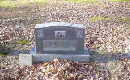 TAYLOR, ABBIE - Adams County, Ohio   ABBIE TAYLOR - Ohio Gravestone Photos