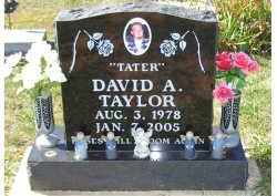 TAYLOR, DAVID A. - Adams County, Ohio | DAVID A. TAYLOR - Ohio Gravestone Photos